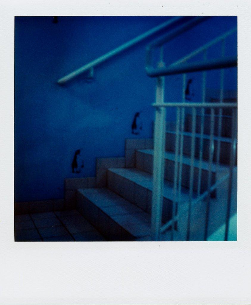 untitled-41.jpg